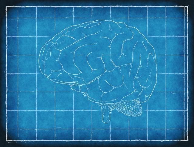 Изображения на мозъка показват връзки между самоконтрола и алкохолната зависимост