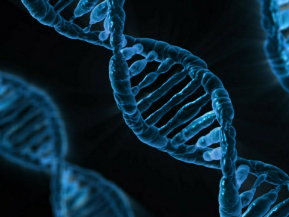 Психичните разстройства са генетично свързани с употребата и злоупотребата с вещества